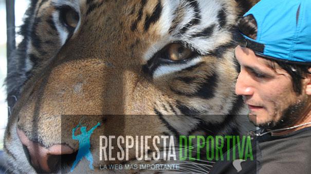 LE SALIO EL TIGRE A HANK EN COLOMBIA