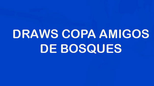 DRAWS 17 COPA AMIGOS DE BOSQUES